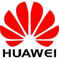 Лицензия Huawei 88031BNU