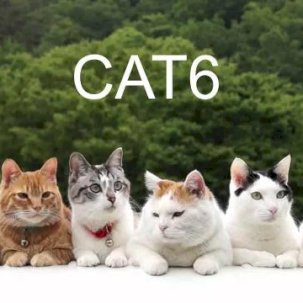 Сказ про кабель Cat6