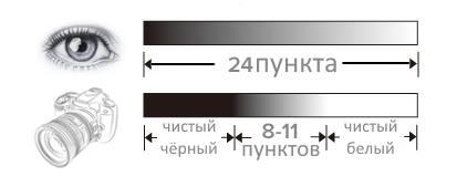 Динамический диапазон глаза и камеры