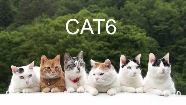 Всё про Cat 6